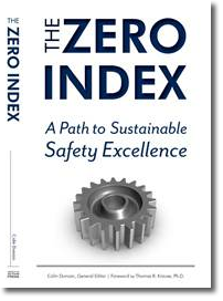 The Zero Index Book Cover